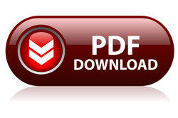 PDFs könnenproblemlos in Excel eingefügt werden.