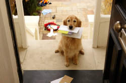Ist der Zugriff zum E-Mail-Account gesperrt, bleibt noch der gute alte Postweg.