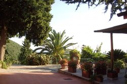 Der mediterrane Stil bringt Urlaubsträume ins Haus.
