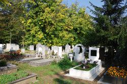 Grabeinfassungen lassen das Grab gepflegter aussehen.