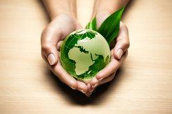 Ökonomie und Ökologie beschreiben zentrale Bestandteile unserer Welt.