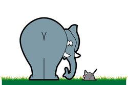 Maus und Elefant stehen in Antithetik.