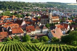 In Stuttgart können Sie wundervolle Weinberg-Wanderungen machen.
