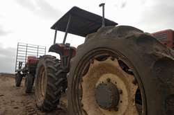 Der polnische Traktoren-Hersteller Ursus hat sich gerade im östlichen Raum einen Namen gemacht.