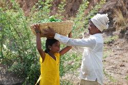 Hilfsorganisationen unternehmen etwas gegen Kinderarbeit.