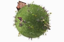 Ökologische Zusammenhänge finden sich stets in einem Ökosystem.
