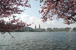 Wasser und immer eine steife Brise - so war und ist Hamburg.