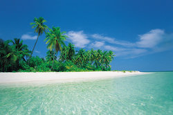 Sowohl die Malediven als auch die Seychellen bieten traumhaften Strandurlaub.