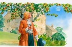 Die Idee der Schwerkraft beruht auf einem Apfelbaum.