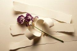 'Neue Liebe, neues Leben' ist ein bekanntes Gedicht des Johann Wolfgang Goethe.