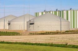 In Deutschland gibt es auch Biomassekraftwerke.