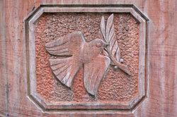 Taube mit Ölzweig - ein Friedenssymbol.