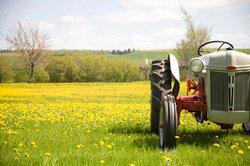 Fans alter Traktoren kommen bei den Eicherfreunden in Forstern voll auf ihre Kosten.
