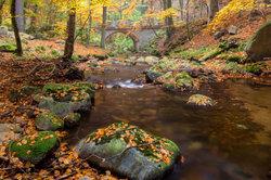 Wandern im Harz lässt Naturfreunden das Herz aufgehen.