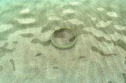 Der Ring des Polykrates landet im Meer.