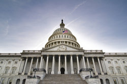Der Kongress sitzt in Washington.