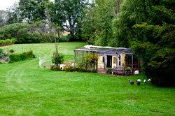 Glückliche Hühner im eigenen Garten