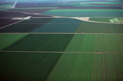 Börden sind fruchtbare Böden, die für den Ackerbau genutzt werden.
