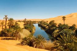 Oasen als Ruhepunkte der Wüste