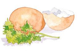 Für so manchen Genießer ein Gedicht - das Ei in unterschiedlichen Variationen