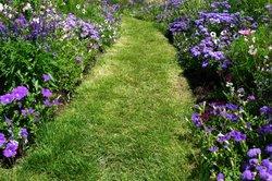 Eine harmonische Bepflanzung des Gartens ist wichtig.