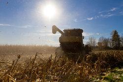 Agrobusiness ist aus ethischen, sozialen und ökologischen Gründen bedenklich.
