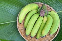 Grüne Bananen sind noch unreif und enthalten überwiegend Stärke.