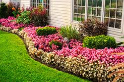 Blumenbeete können bunt oder einfarbig angelegt werden.