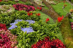 Blumenbeete bringen Farbe in den Garten.