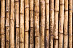 Bambus ist ein ökologisches Material.