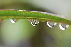 Die Wasserbilanz ist in vielen Bereichen von essenzieller Bedeutung.