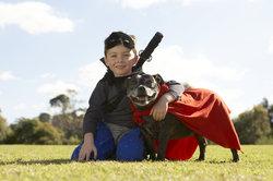 Ohne konsequente Erziehung sind Hunde eine Gefahr.