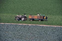 Der F1L612 wurde viel in der Landwirtschaft eingesetzt.