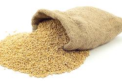 Braunhirse besitzt wertvolle Inhaltsstoffe für Haut und Haare.
