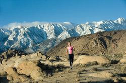 Halbmarathons in landschaftlich ansprechendem Terrain erfreuen sich häufig an Dauerteilnehmern.