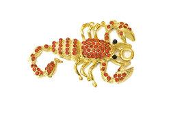 Das Sternzeichen des Skorpions steht für bestimmte Merkmale und Wesenseigenschaften.