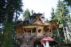 Ein Baumhaus im Wald ist wundervoll.