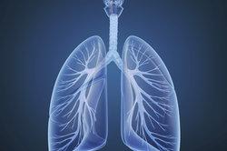 Bei Erkrankungen kann sich in der Lunge Schleim bilden.