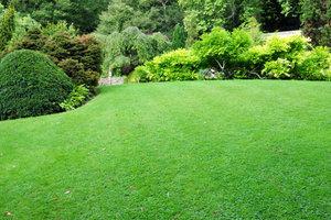 Ein gepflegter Rasen ist ein schöner Anblick.