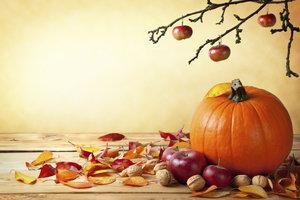 Wunderschöner Samhain-Brauch: Mit Kindern einen Herbstaltar gestalten