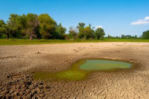 Effiziente Maßnahmen sollten Klimawandel verhindern.