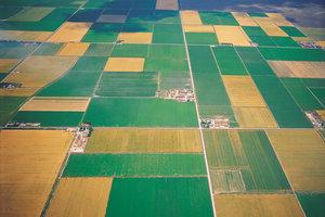 Börden werden landwirtschaftlich intensiv genutzt.
