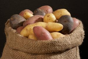 Französische Kartoffeln gibt es in verschiedenen Farben und Geschmacksrichtungen.