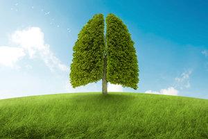 Ohne Sauerstoff wäre ein Leben auf der Erde nicht möglich