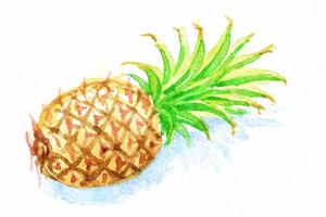 Ananas mit grünem Blatt ist für Vermehrung geeignet.