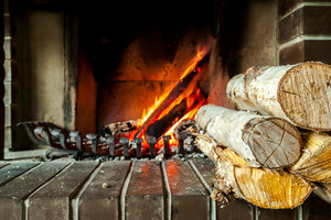 Gemütlichkeit bieten alle Brennhölzer, nur im Brennwert unterscheiden sie sich.