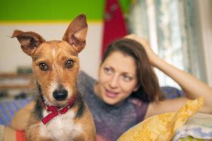 Viele Haustiere haben es faustdick hinter den Ohren.