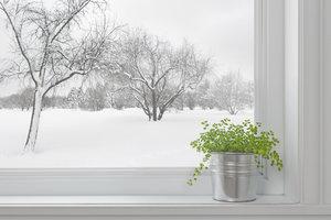 Beschlagene Fenster können zur Schimmelbildung führen.