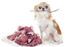 Barfen ist die natürliche Ernährung eines Hundes