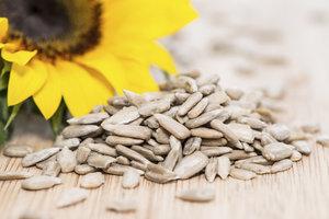 Sonnenblumenkerne sind gesund und knackig.